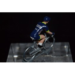 Wanty Groupe Gobert 2017 - Metal cycling figure